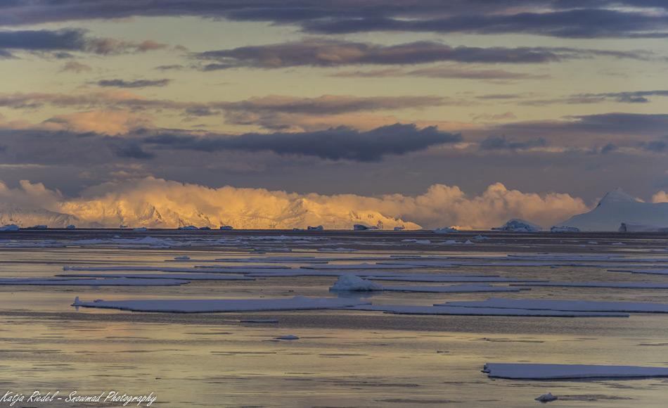 In diesem Jahr hat die antarktische Meereisbedeckung fast den im vergangenen Jahr aufgestellten Minimum Rekord in den Schatten gestellt. Satellitendaten zeigen eine Ausdehnung von 2,15 Millionen km2 (Foto: Katja Riedel)