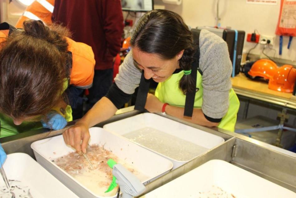 In den mittleren Tiefen der Kerguelen-Achse liegen noch immer unbekannte Arten, denen Wissenschaftler mit Hilfe von Netzen auf der Spur sind. Bild: Dr. Christina Schallenberg