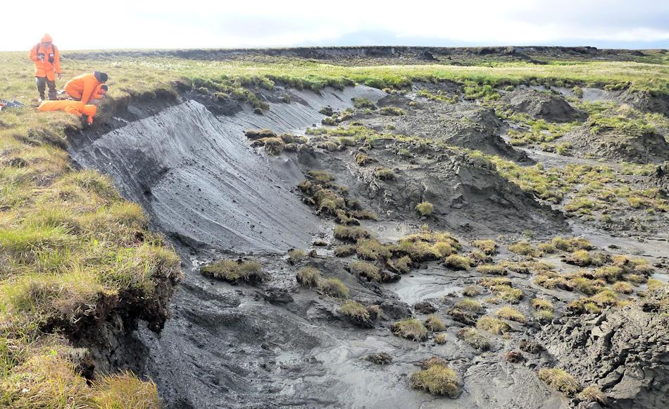 Die Untersuchungsresultate stammten aus Material, dass der Fluss Amur in Sibirien vor Jahrtausenden ins Meer geschwemmt hatte. Genau dieser Prozess kann heute wieder auf der Bykovsky-Halbinsel beobachtet werden, wo die Küste enorm schnell wegerodiert. Bild: Guido Grosse