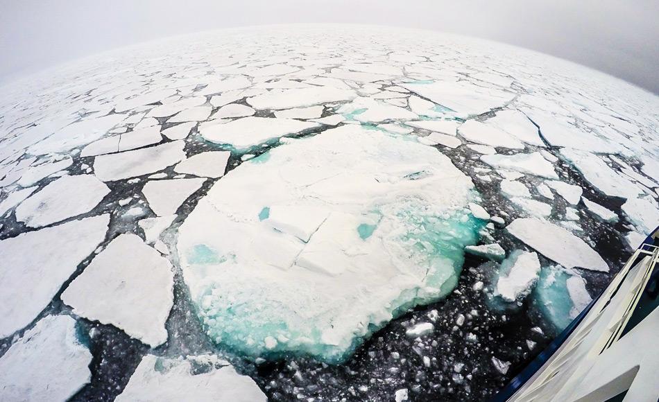 Das arktische Meereis spielt eine wichtige Rolle im Klimasystem der Erde. Es kühlt die Polargebiete, mäßigt das Klima und wirkt wie ein Sonnenschirm. Eis hat eine helle Oberfläche, die 80 Prozent des Sonnenlichtes in den Weltraum reflektiert. Wenn das Meereis schmilzt, wird es durch eine dunkle Ozeanoberfläche ersetzt, die Wärme absorbiert. Bild: Katja Riedel,