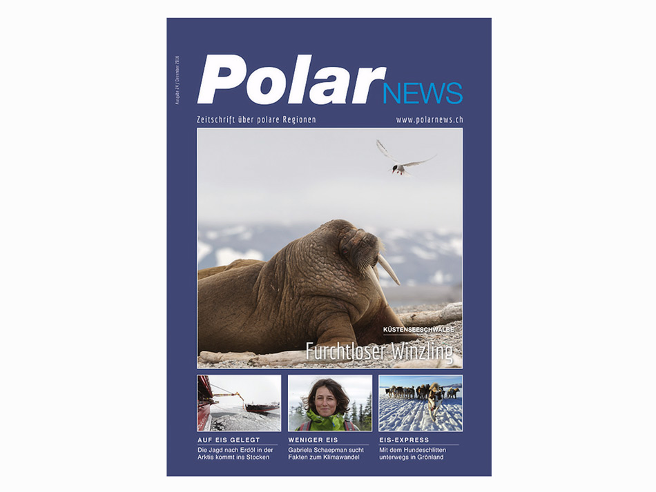 PolarNEWS-24-Titel